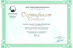 Endosurgery-Elvira-Nizamtdinova